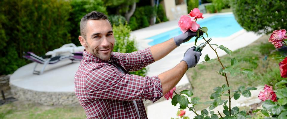 Comment devenir architecte paysagiste ?